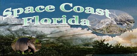 Space Coast Florida Link