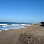 Canaveral National Seashore - Playalinda Beach